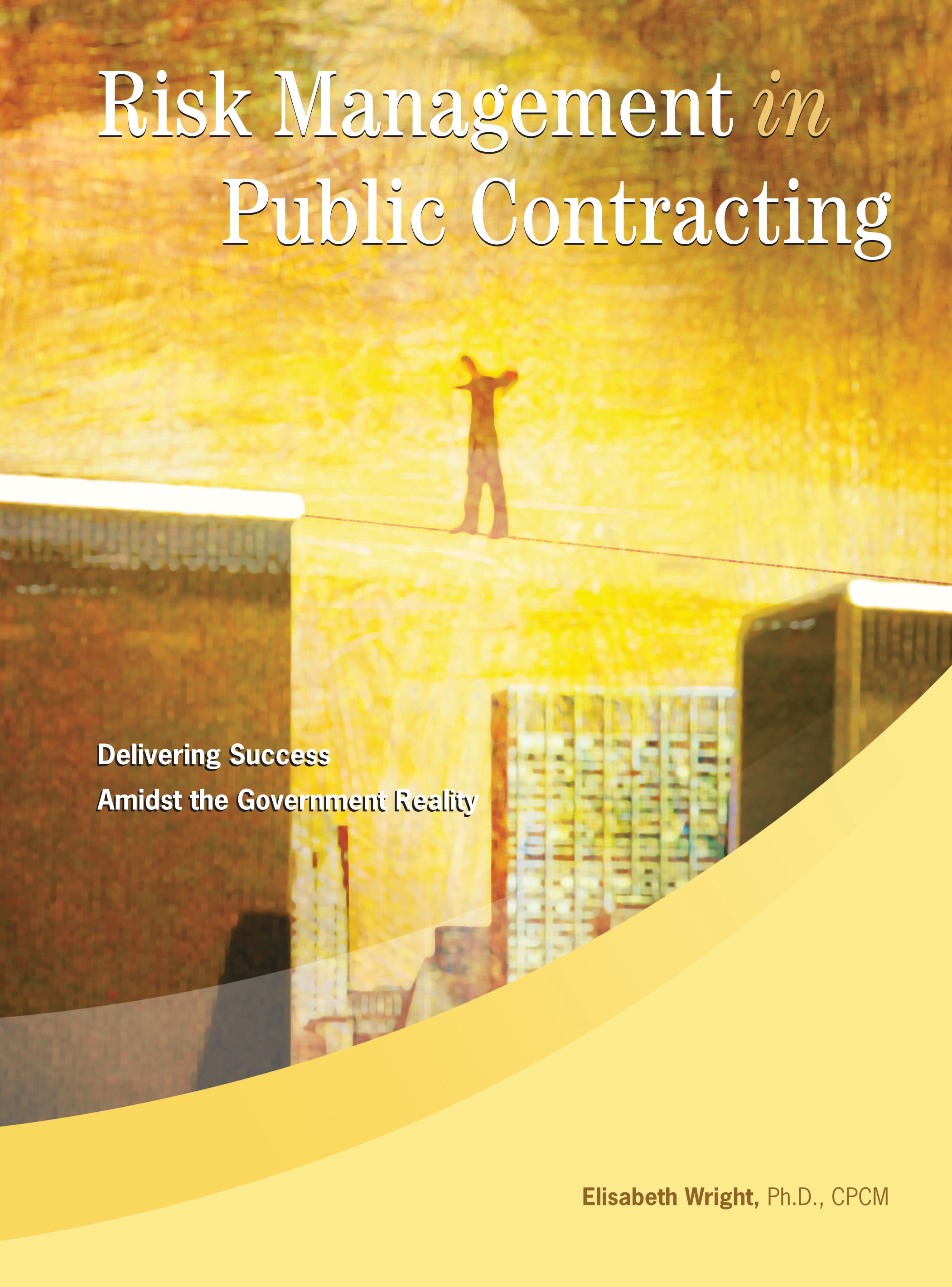 eBook Risk Management in Public Contracting